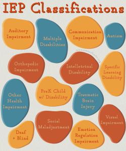 IEP Classification Categories